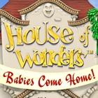 House of Wonders: Babies Come Home 게임
