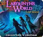 Labyrinths of the World: Lost Island Collector's Edition 게임