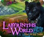 Labyrinths of the World: The Wild Side 게임
