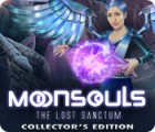 Moonsouls: The Lost Sanctum Collector's Edition 게임