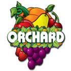 Orchard 게임