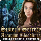 Sister's Secrecy: Arcanum Bloodlines Collector's Edition 게임